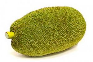 Jackfruit-1